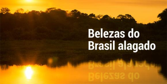 Pernambuco.com revela as belezas do Pantanal (In�s Campelo/DP/D.A Press)